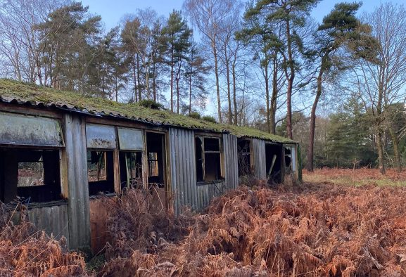 Collapsed chicken sheds with asbestos cement sheeting